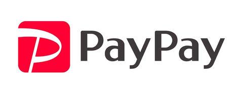 PayPay使ってビックで買い物|現金決済もポイントカードももう嫌だ