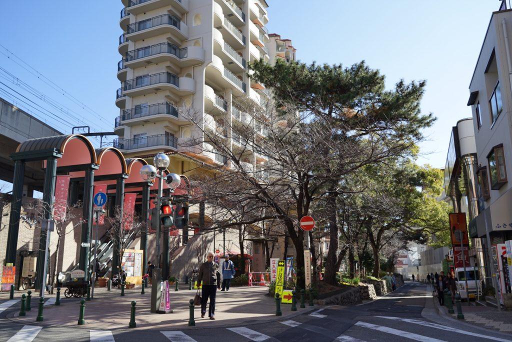 宝塚駅の花の道